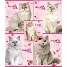 Тетрадь А5, 12л., клетка, Большие кошки